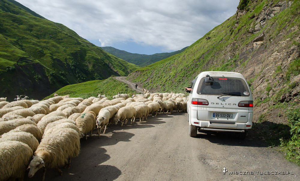 Trasa z Shatili do Roshki