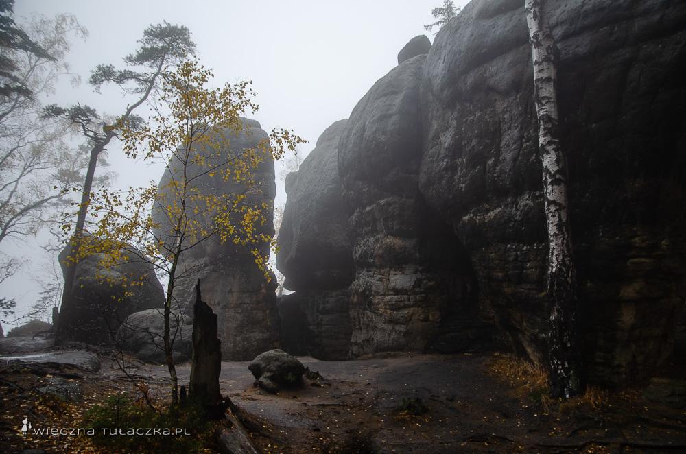 Radkowskie Skały, Góry Stołowe