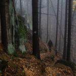 Najpiękniejsze szlaki w Górach Stołowych