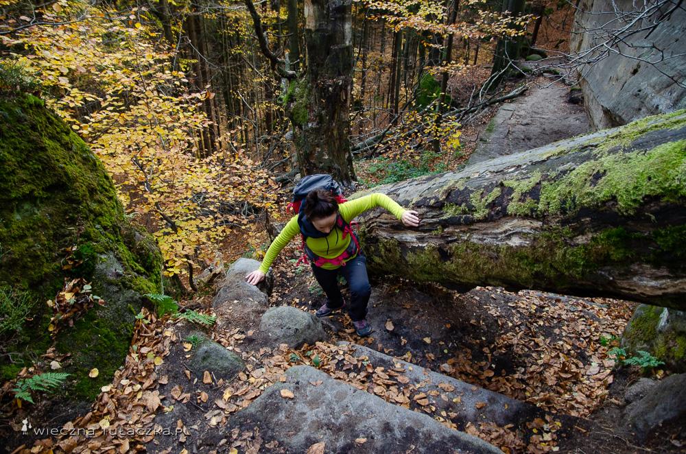 Szlaki w Czechach