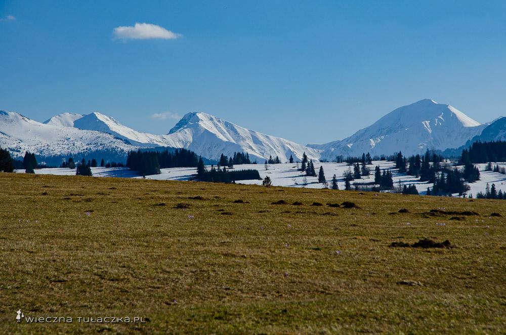 Tatry Zachodnie ze szlaku przez Ostrysz