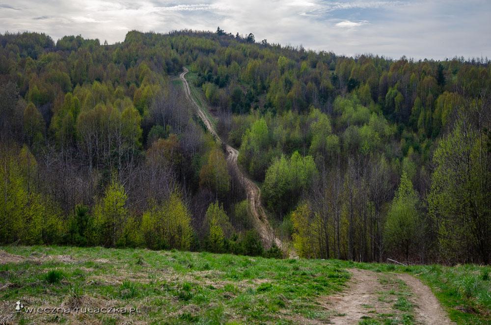 Radostowa, Główny Szlak Świętokrzyski