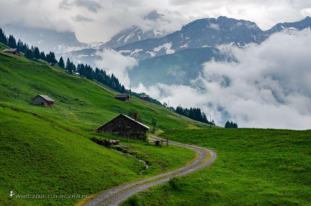 Via Alpina, długodystansowy szlak przez Szwajcarię