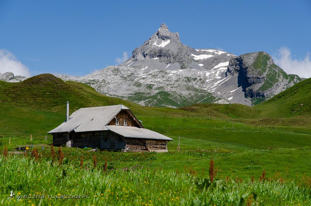 Via Alpina, szlak dla piechurów