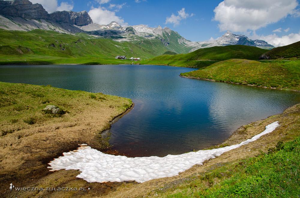 Via Alpina, szwajcarski szlak długodystansowy