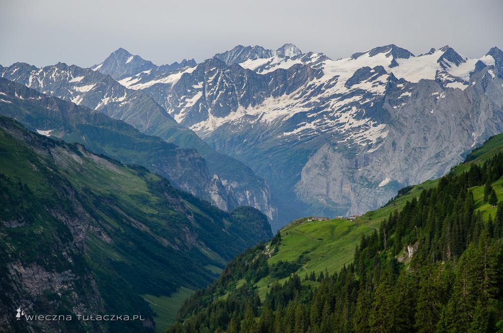 Via Alpina, szlak alpejski