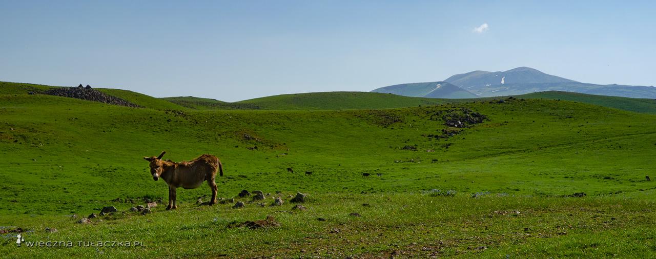 Azhdahak Armenia