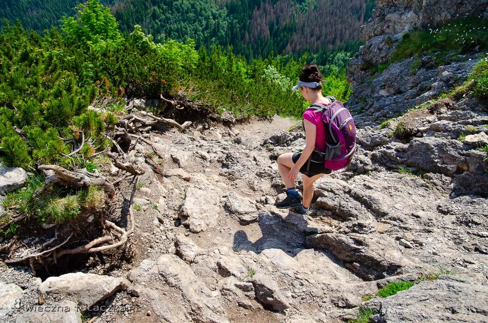 Opis szlaku na Sarnią Skałę