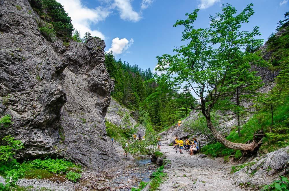 Dolina Białego, Tatry