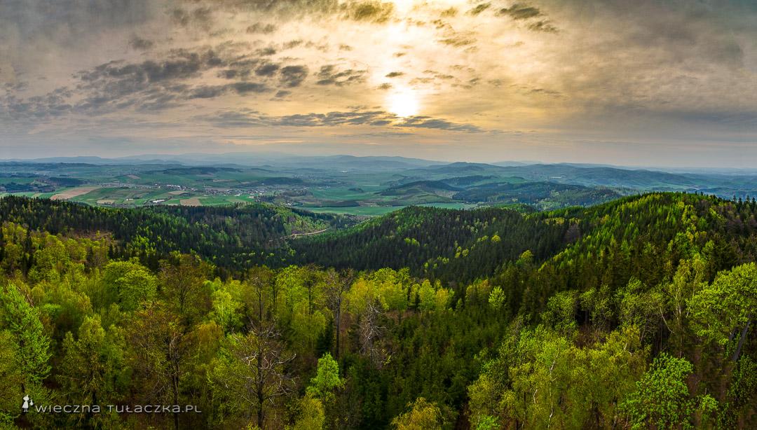 Trójgarb w Górach Wałbrzyskich