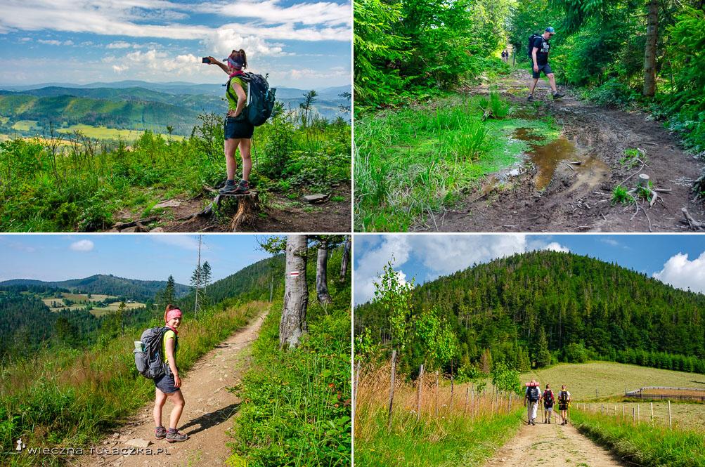 Szlak na Przełęcz Przegibek