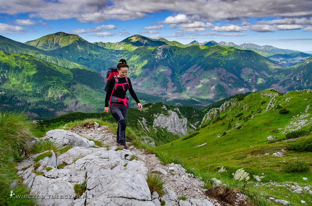 Szlak na Ciemniak z Doliny Tomanowej