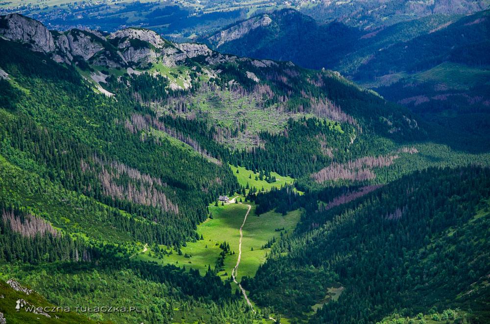 Zielony szlak na Przełęcz pod Kopą Kondracką