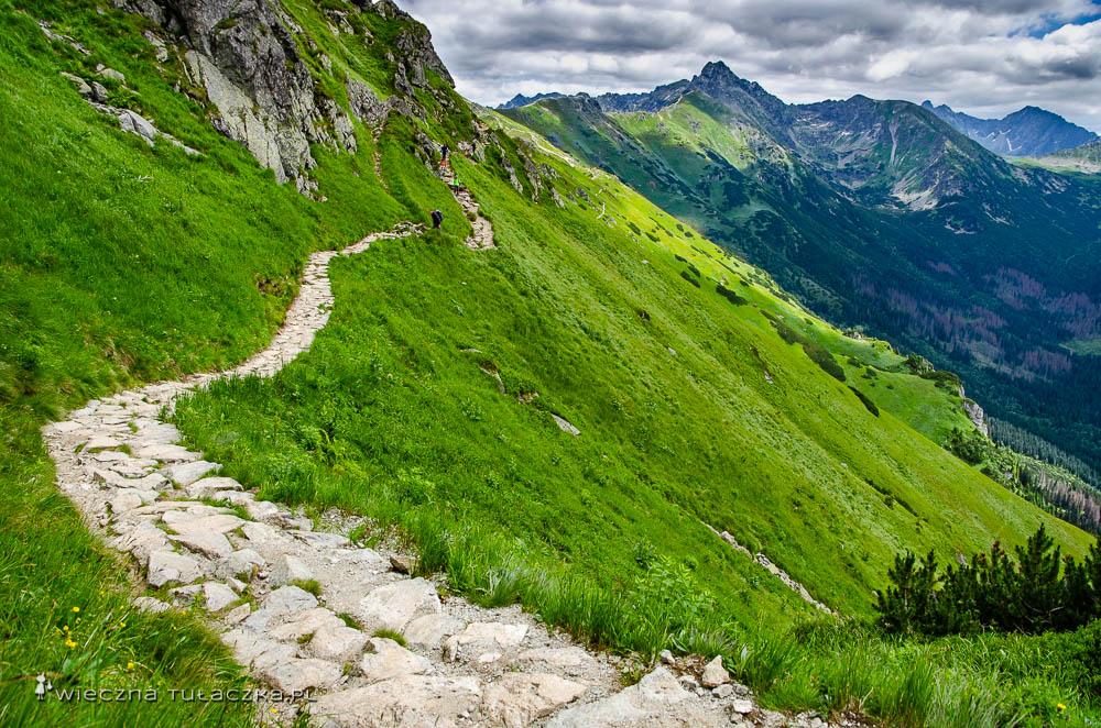 Szlak przez Goryczkową Czubę