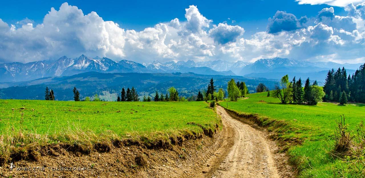 Szlak z Łapsz NIżnych przez Groń na Przełęcz nad Łapszanką