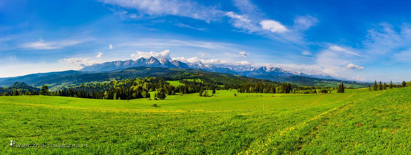 Przełęcz na Łapszanką, widok na Tatry
