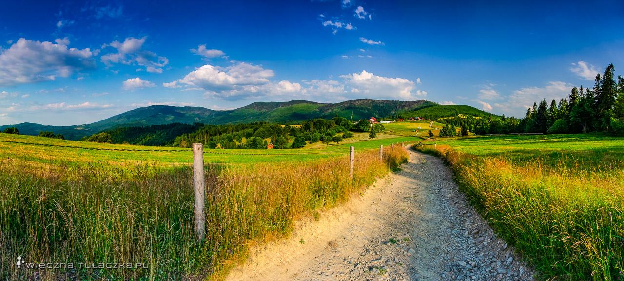 Panorama gór Beskidu Żywieckiego