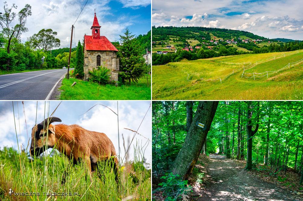 Okolice wsi Jeleśnia
